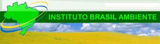 Instituto Brasil Ambiente